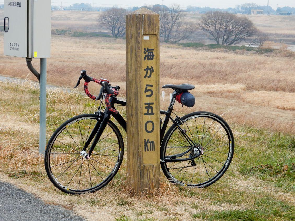 江戸川CR 50kmポスト